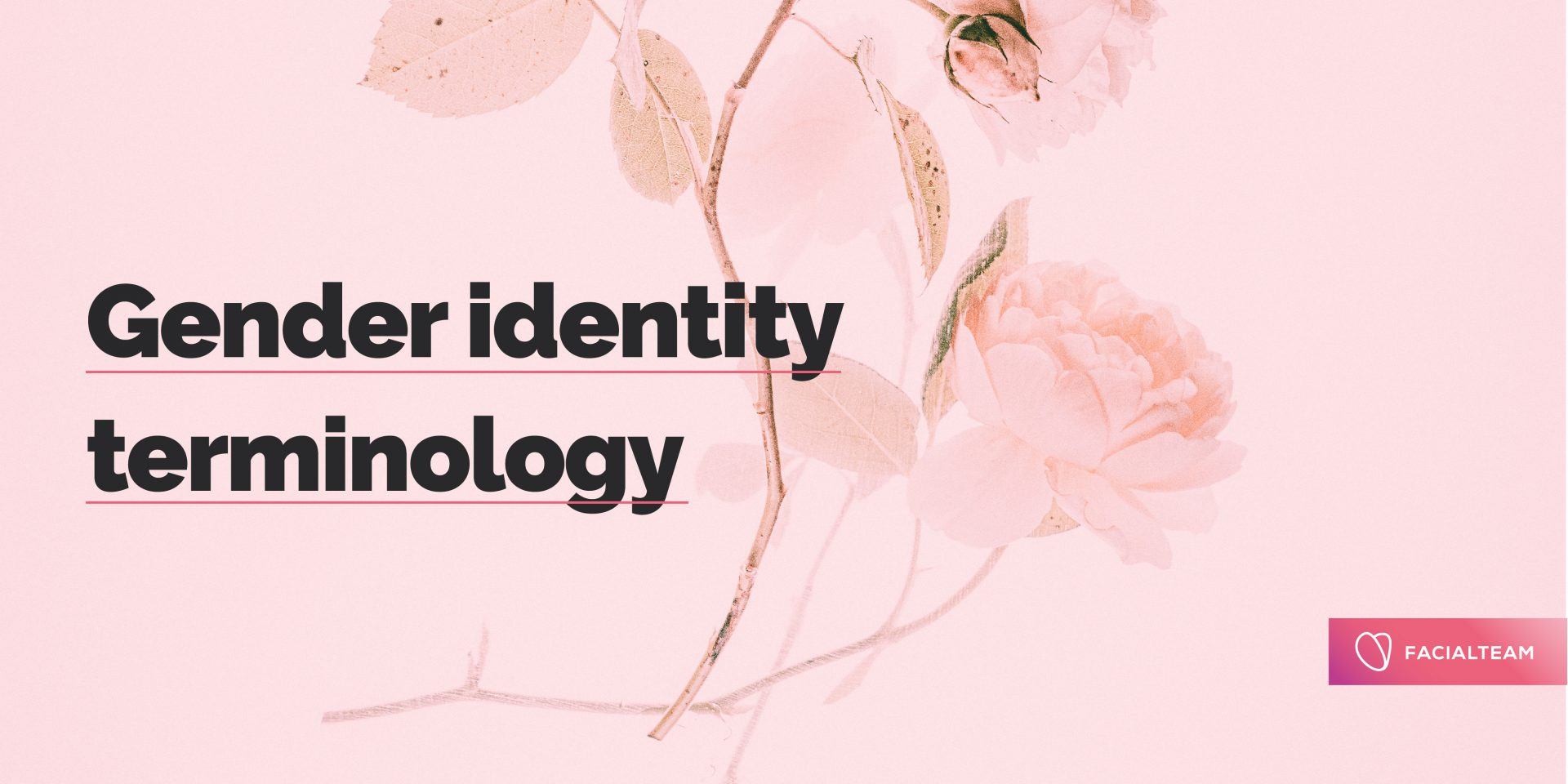 Gender identity terminology: What's your pronoun?